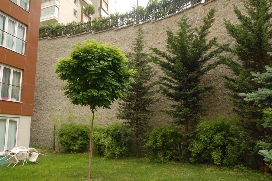 Agaoglu-My-City-Bahcelievler-1
